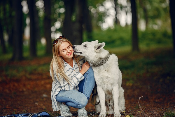 Elegant and stylish Russian girl in nearby her friendly dog in the forest